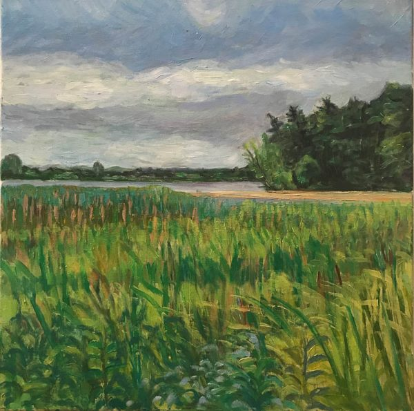 Lake Vadnais Meadow by ws mccarty
